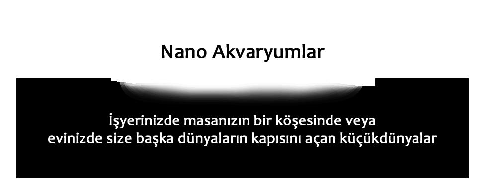 nano_metin